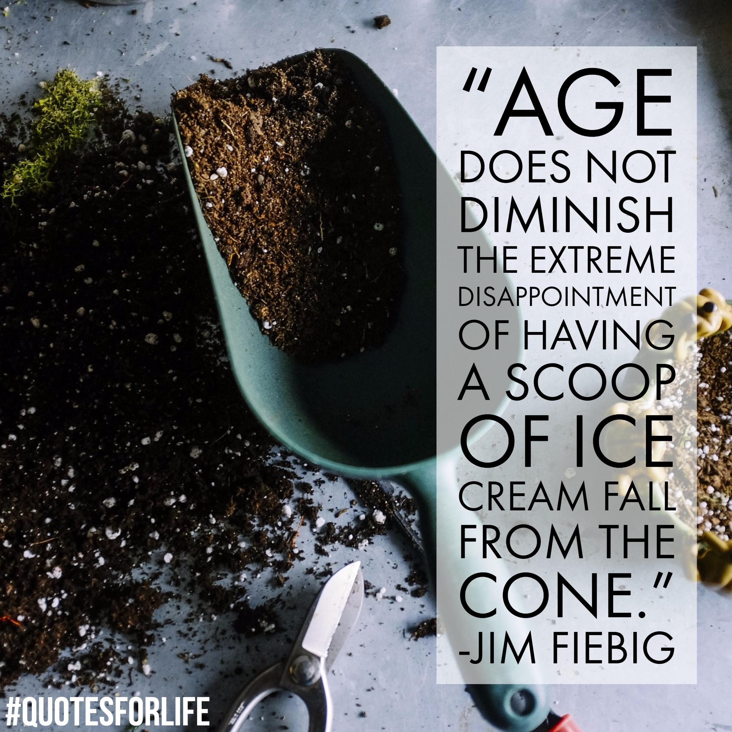 Jim Fiebig